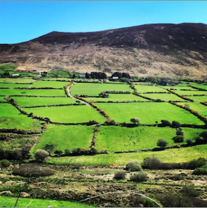 Basically all of Ireland looks like this.